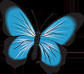 Psicologa Torino Logo